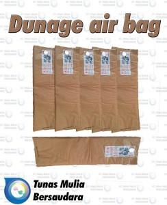 Dunnage Air Bag